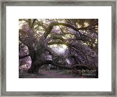 Fairy Tree Framed Print by Robert Ball