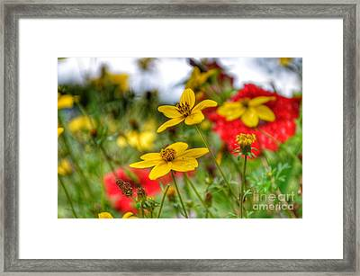Framed Print featuring the photograph Faith by Isabella F Abbie Shores FRSA