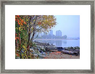 Fall At Stanley Park Framed Print