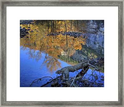 Fall Color At Big Bluff Framed Print by Michael Dougherty
