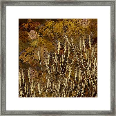 Fall Garden Framed Print by Jeff Burgess