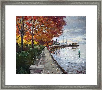 Fall In Port Credit On Framed Print by Ylli Haruni