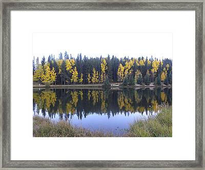Potty Pond Reflection - Fall Colors Divide Co Framed Print
