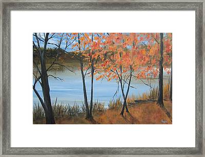 Fall N Lake Framed Print by Pete Maier