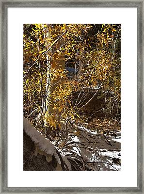 Framed Print featuring the painting Fall Sierra Nevada Larry Darnell by Larry Darnell