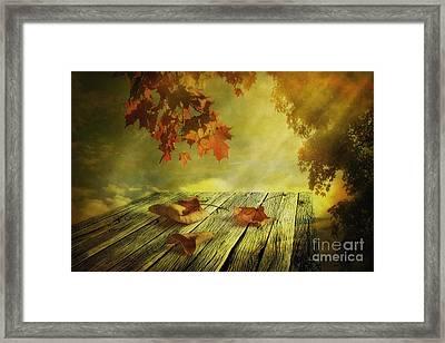 Fallen Leaves Framed Print by Veikko Suikkanen