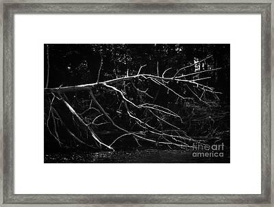 Fallen Warrior Framed Print
