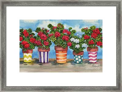 Fancy Pots Geraniums Framed Print by Paul Brent