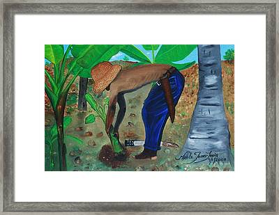 Framed Print featuring the painting Farmer Planting Banana Tree by Nicole Jean-Louis