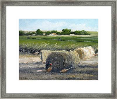 Farmland Framed Print