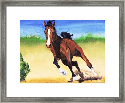 Fast Horse Framed Print by Sherril Porter