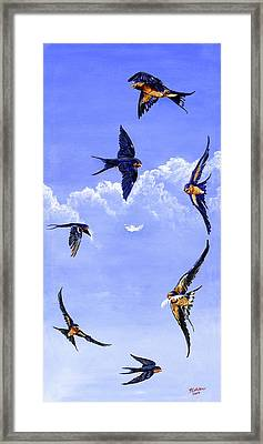 Feathers Framed Print by Robert M Walker
