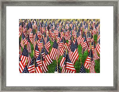 Field Of Flags Framed Print by Karol Livote
