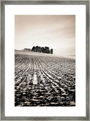 Field With Snow-covered Furrows. Auverge. France. Europe. Framed Print