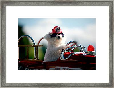 Fifi The Fire Dog Framed Print