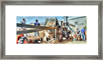 Filling The Sack 3485 Framed Print by Jerry Sodorff