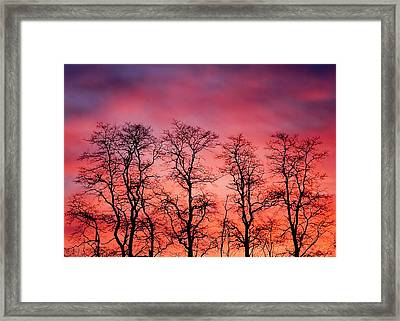 Fire In The Sky Framed Print