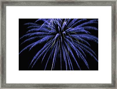 Fireworks Framed Print by Joe Granita
