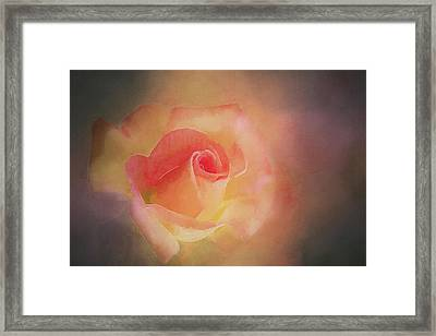 First Bloom Framed Print by Terry Davis