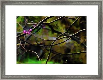 First Sign Of Spring Framed Print by Gerlinde Keating - Galleria GK Keating Associates Inc