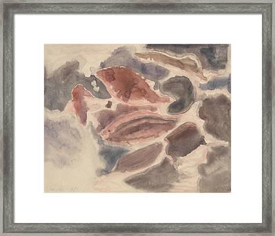 Fish Series, No. 2 Framed Print
