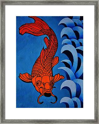 Fish 2 Framed Print by Stephen Humphries