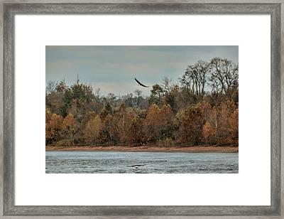 Fishing In Autumn Framed Print by Jai Johnson