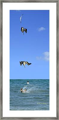 Framed Print featuring the photograph Fishing With Friend by R B Harper