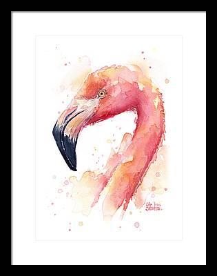 Flamingo Framed Prints