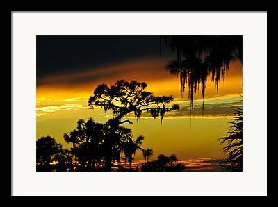Rare Sunset Framed Prints
