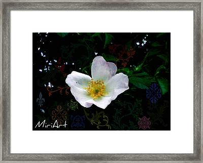 Framed Print featuring the photograph Flower Deco by Miriam Shaw