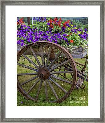 Flower Wagon Framed Print