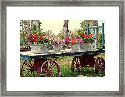 Flower Wagon Framed Print by Susanne Van Hulst
