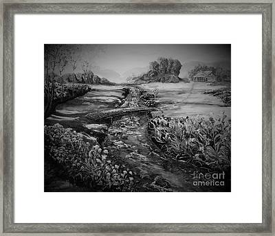 Flowers In A Meadow Framed Print by Rich Donadio