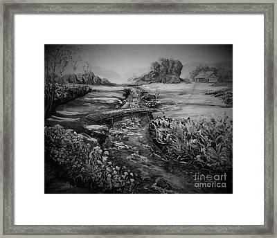 Flowers In A Meadow Framed Print