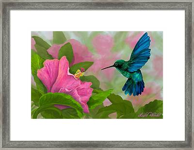 Flying Colors Framed Print by Leslie Rhoades
