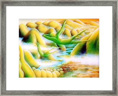 Flying Dream 1 Framed Print by Barbara Stirrup