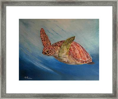 Flying Underwater Framed Print