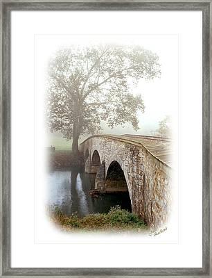 Foggy Morning At Burnside Bridge Framed Print