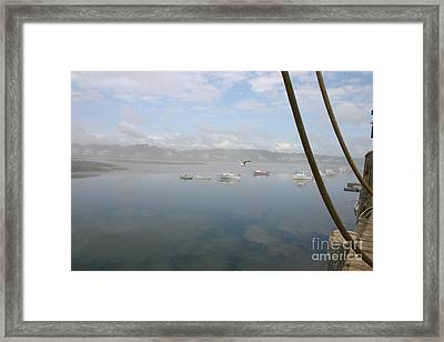 Foggy Morning At Cape Porpoise Framed Print by David Bishop