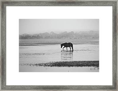 Foggy Morning Crossing Framed Print by Bob Decker