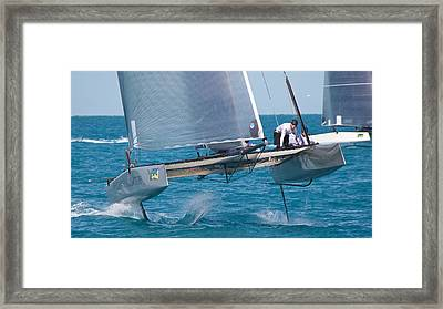 Foiling At Key West Framed Print by Steven Lapkin
