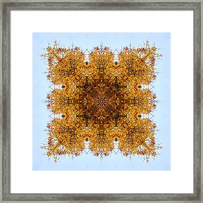 Foliage Creations 8 Framed Print