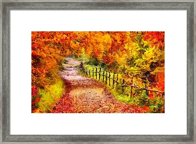 Fall Foliage Path 2 Framed Print