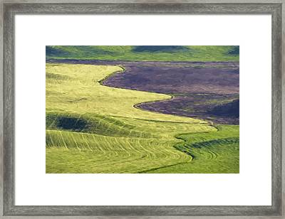 Follow The Lines II Framed Print