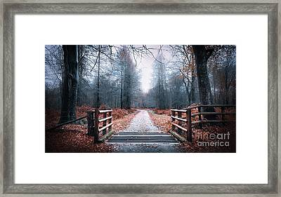 Forest Path Framed Print by Svetlana Sewell