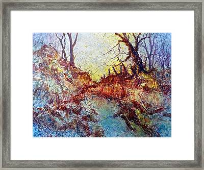 Forgotten Fence Framed Print