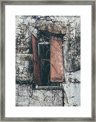 Framed Print featuring the photograph Forgotten Homestead by Kim Hojnacki