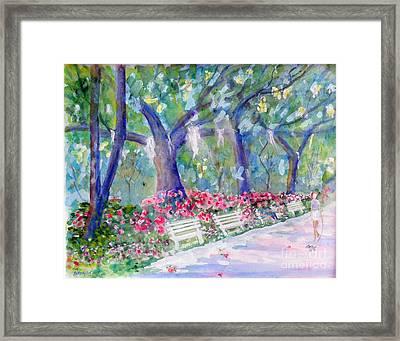 Forsyth Park Savannah Framed Print