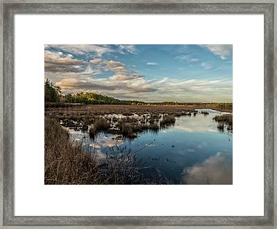 Franklin Parker Preserve Landscape Framed Print by Louis Dallara
